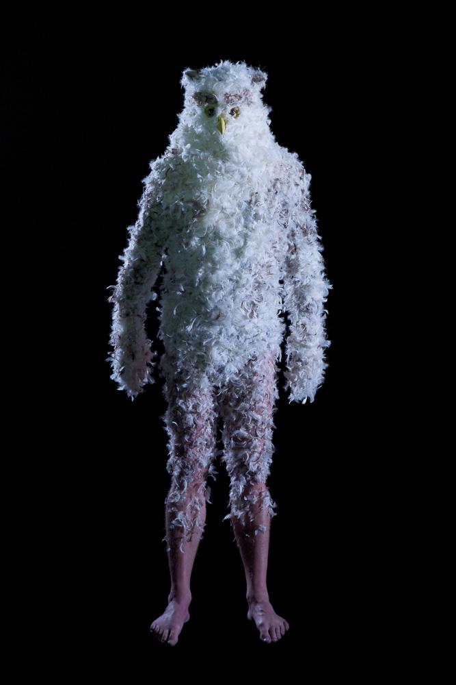 Bjørn Melhus: Nightwatch |Nachtwache, Installation,  2010, Videostill (Eule)