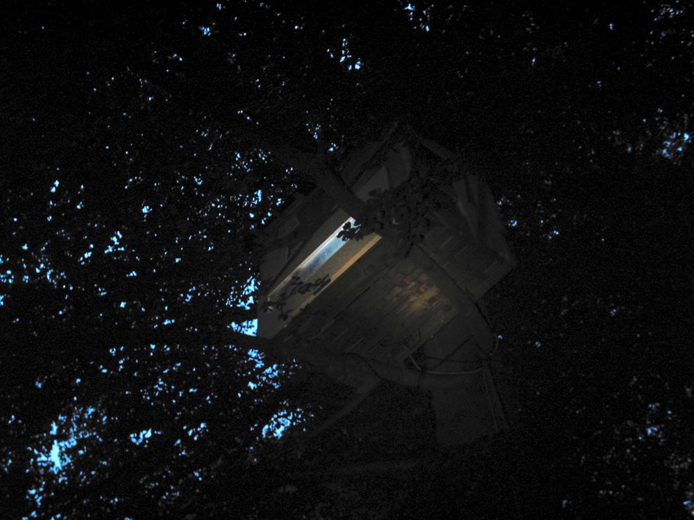 treehouse#1kassel