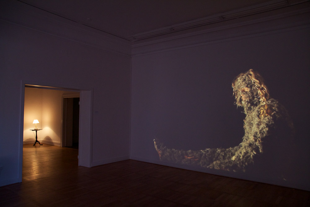 "Bjørn Melhus: ""I do not belong in this House"", HD Video, 24 min., loop, 2011, Installation View: Live Action Hero, Haus am Waldsee, 2011, Photo: Bjørn Melhus"